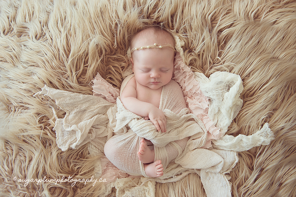 Best Newborn Photography Toronto