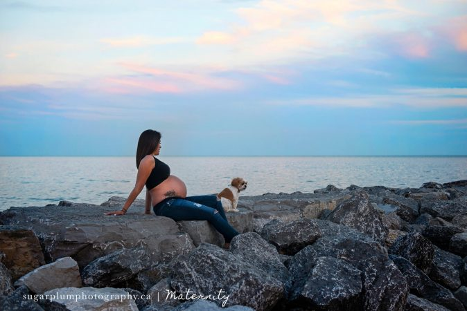 Pregnant mother and dog sitting on rocks at beach