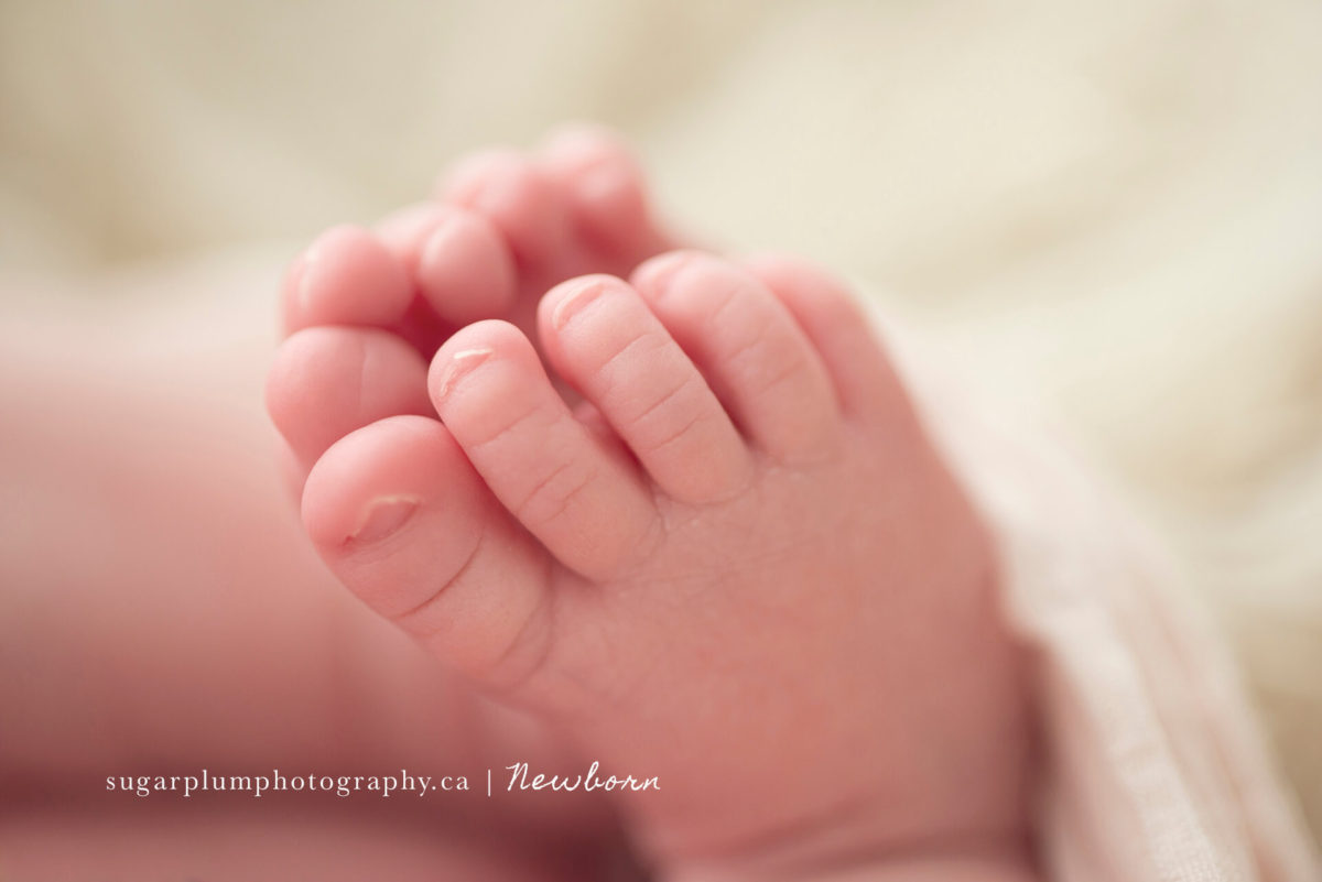 Newborn baby feet close up