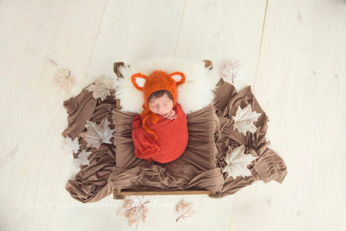 Fall Themed Newborn Session
