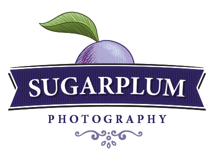 Toronto Newborn Photography | SUGAR PLUM logo